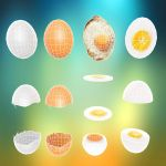 Egg in all its forms by sanderndreca