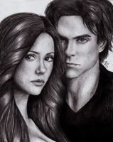 Delena / Damon and Elena by RomcaS
