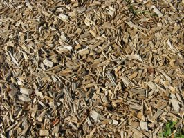 Wood Chips by TessieLAmour
