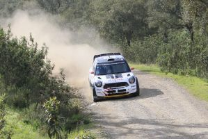 2013, Kosciuszko, Mini, Ourique, Rally Portugal by F1PAM