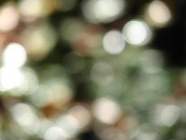 Bokeh Texture 2 by MissyStock