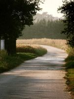 road. by Casiula