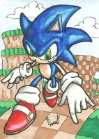 Sonic Sketch Card by ibroussardart
