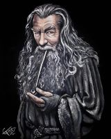 Gandalf The Grey by ZomBieTOmmm