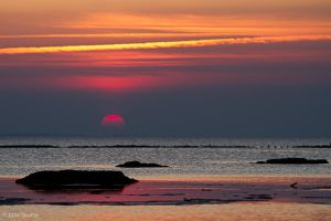 Sunset at Vadehavet by JS2010