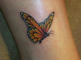 Butterfly by ErinClayton