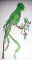 Project: Resplendent Quetzal by Tesuway-chan