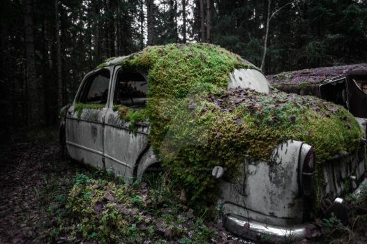 Forest cars 10 by TheSlowSlowpoke
