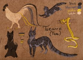 Tazarre ref by captainhawkeh