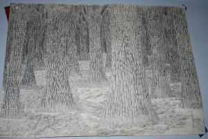 Trees by TheArtgrrl