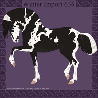 Winter Import 636 by ThatDenver