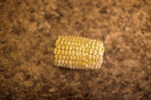 Corn on The Cob Stock by VioletBreezeStock