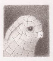 bunny bunny by reneefrench