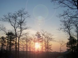 March Morning by you-mad-b-r-o