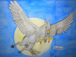 Buckbeak by Dragon-of-Rivendell