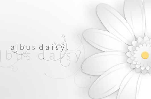 albus daisy by dave-stone