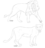 ~Free~ Male And Female Lion Lineart by catdoak