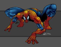 Spiderman By GreatLP by TheNass