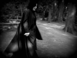 Severus Snape 1 by Catchmewithyourlips