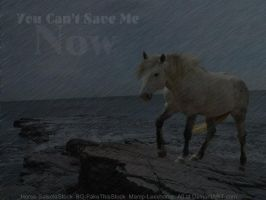 You Can't Save Me Now by lexxhorse