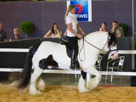 STOCK - 2014 Total Equine Expo-64 by fillyrox