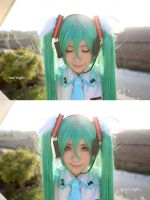 VOCALOID-last night,good night by nozomiwang