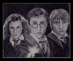 The Trio by Devil-Wolf-1999