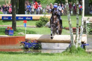 3DE Water Jump Series Bay Horse Pt 4 by LuDa-Stock