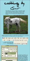 How To Cut Out An Image by equestrian88