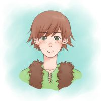 HTTYD - Hiccup by barae