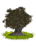 PNG TREE 3 by Moonglowlilly