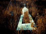 Abandoned cemetery 2 by ipawluk