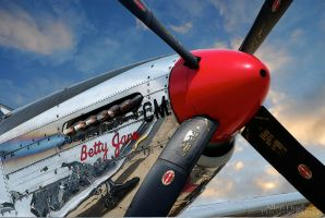 Betty Jane by Allen59