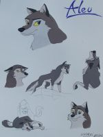 aleu from balto II the wolf quest fanart by draggane