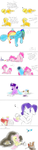 Life with being a foals carrier by PhuocThienCreation