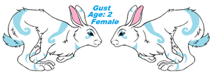 Gust Ref Sheet by Zelda-Wolfy