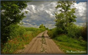 Hungarian landscapes.HDR-picture by magyarilaszlo