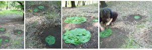 Soil Lilypads by hippiedesigner