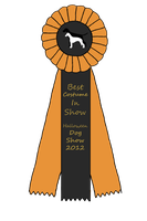 Best Costume Halloween Show Ribbon by HiddenParadise1