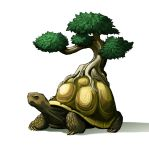 Bonsai Tortoise by Maieth