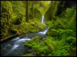 Fairyland Falls by MarcAdamus