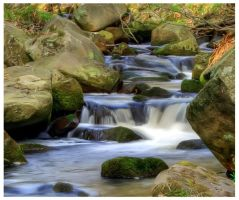 padley gorge 12 by mzkate