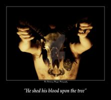 HE SHED HIS BLOOD UPON THE TREE (DSCF1511 #1a) by Chattering-Magpie