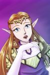 Princess Zelda 2013 by crazyfreak