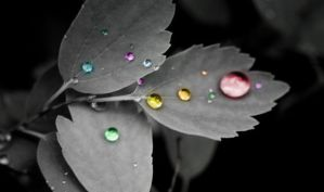 water drops 2 by eggsmakemesmile