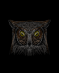 Owl by Colliequest