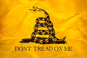 Grunge Gadsden Flag by Oultre