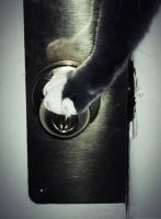 Escape Attempt 587 by JinxyWinxy