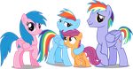 Rainbow dash's family by Vector-Brony