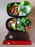 Bento: Day 2 by KajaCamorra